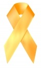 Orange Awareness Ribbon for Anti-Hunger Causes